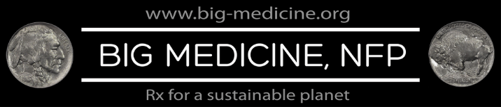 BigMedicineLogo07